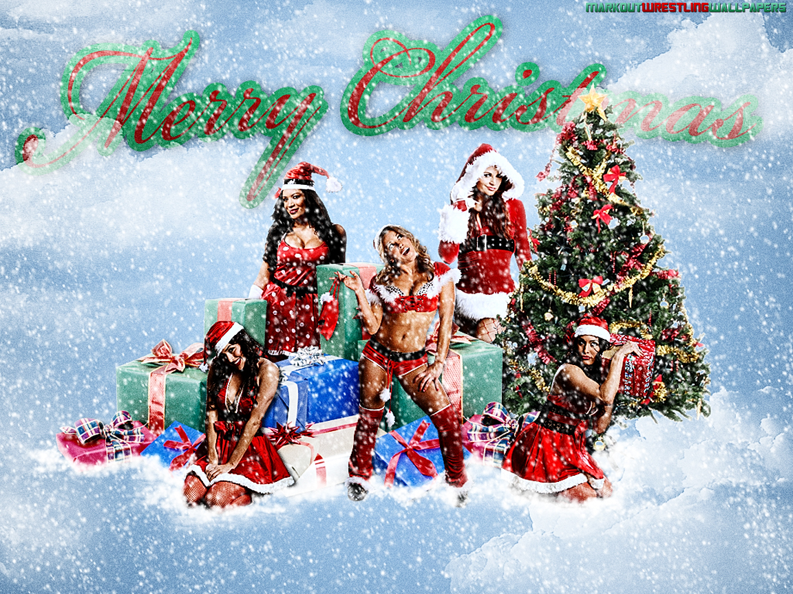 Posted in Bella Twins, Maria Kanellis, Mickie James, Milena,